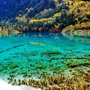 lakes of jiuzhaigou sichuan - china tour operators